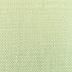 simili samoyede albi