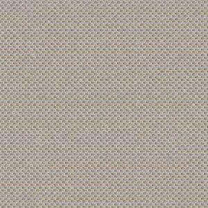 beige grisé